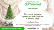 """Движение ЭКА: проект """"ПосадиЛес"""""""