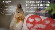 Движение ЭКА: в Московской области стартует акция «Укорени свою любовь»