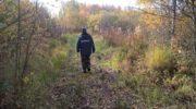 50 человек вывели из леса спасатели Московской области с начала 2019 года