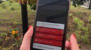 С помощью мобильного приложения Системы-112 Московской области чаще всего вызывают скорую помощь