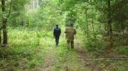 Более 800 заблудившихся вывели спасатели из лесов Московской области