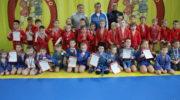 Красногорск, Нахабино: XXII турнир «Будущие звёзды самбо – 2019»