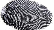 Похождения хироманта в красногорской гимназии: а были ли «пальчики»?