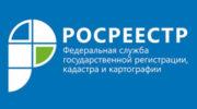 Жителей Московской области бесплатно проконсультируют специалисты кадастровой палаты по Московской области