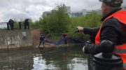 Красногорск, река Банька. Борьба за экологию – дело общее