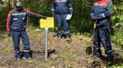 Администрация г.о. Люберцы благодарит энергетиков «Россети Московский регион» за оперативное восстановление электроснабжения потребителей